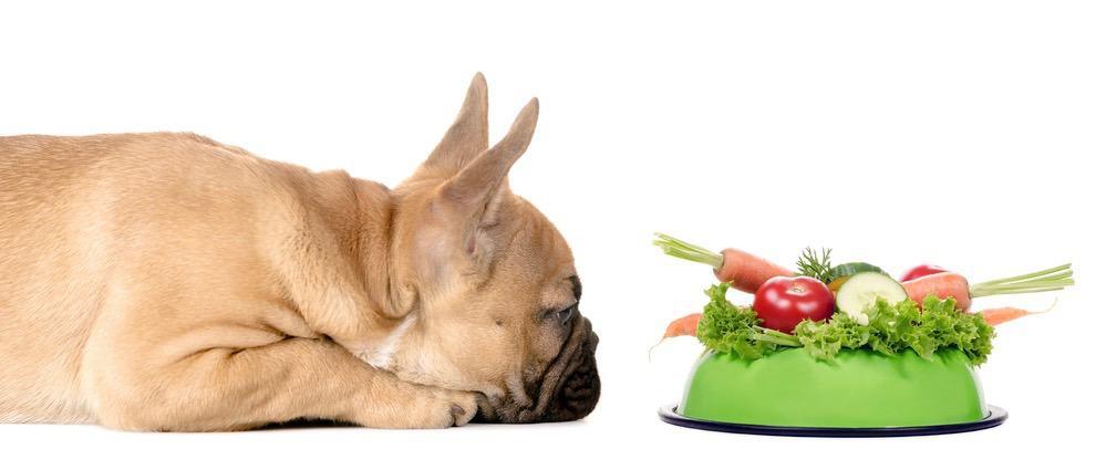 French Bulldog Puppy Feeding Chart