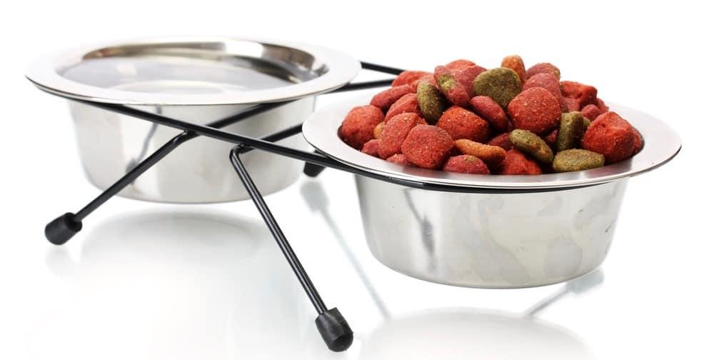 Miniature Poodle Food