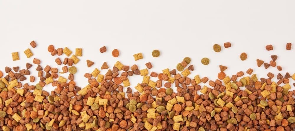 Belgian Malinois Puppy Dog Food
