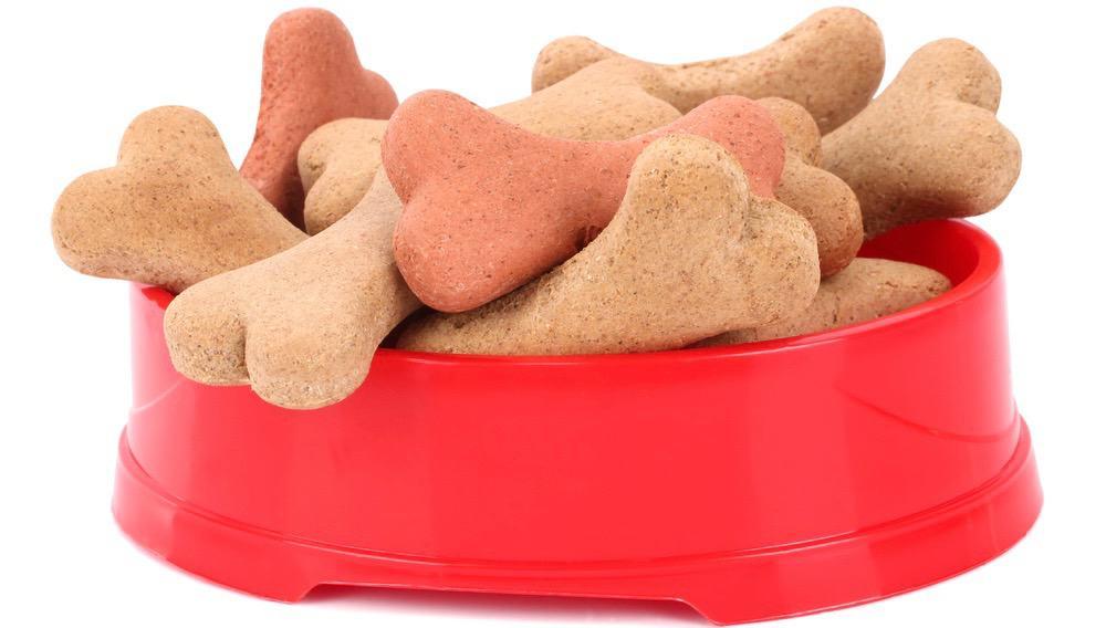 Mastiff Food